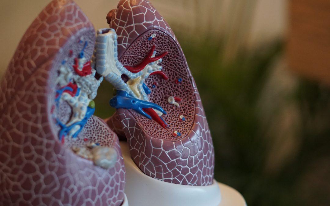 Podcast: Respiratory Health